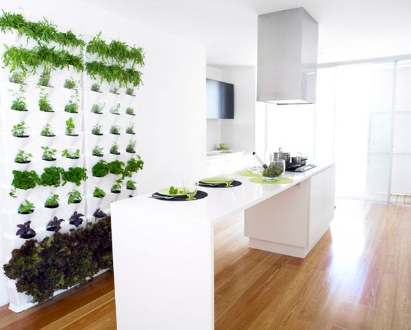 Minigarden Kitchen